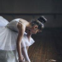 Балерина :: Olga Volkova