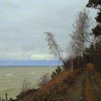 Начало ноября у моря . :: Мила Бовкун