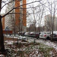 Первый снег во дворе :: Андрей Лукьянов