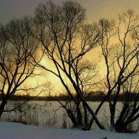 Зимнее солнце :: НАТАЛЬЯ