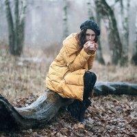 Под снегодождем... :: Александр Фролов