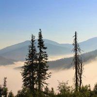 Утро с туманом :: Сергей Чиняев
