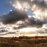 Золотятся травы в октябре Под холодным солнцем осени... :: Анатолий Клепешнёв