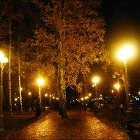 Вечерняя осенняя аллея :: Надежда