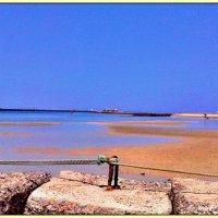 Red Sea отлив :: Denis Lipatov