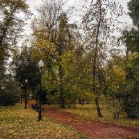 В городе осень и дождь, и слякоть... :: Игорь Егоров