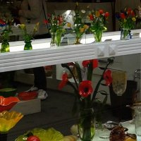 Цветы на продажу :: Надежда
