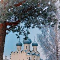 Краски Снежной Королевы...) :: Mari_L