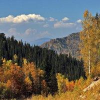 осень в горах :: vladimir polovnikov