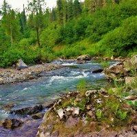 На изгибе реки :: Сергей Чиняев