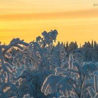 краски северного заката :: 30e30 (Игорь) Васильков