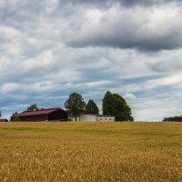 Фермерское хозяйство :: Waldemar F.