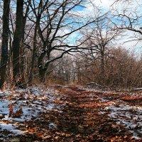 А за окном — без четверти зима, и странное волнение на сердце.. :: Андрей Заломленков