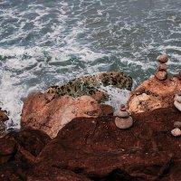 На берегу Средиземки ..... :: Aleks Ben Israel