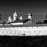 У древних стен монастыря :: Наталья Кузнецова