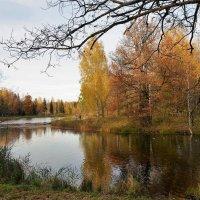 Свет милой осени моей... :: Sergey Gordoff