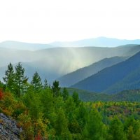 Дыхание леса :: Владимир Куликов