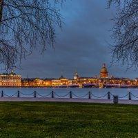 Панорама с Дворцовым мостом :: Valerii Ivanov