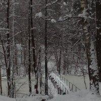 мостик в зиму... :: Евгения Куприянова