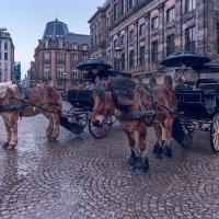 Дождливый Амстердам :: Игорь Геттингер (Igor Hettinger)