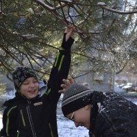 Пеpвый снег :: Анастасия Быкова