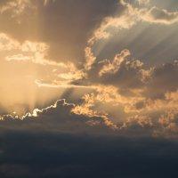 И солнце всходило... Художник Природа :: Мила ...