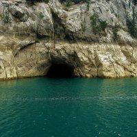 Кто,кто в пещерке живёт? :: Sergey Gordoff