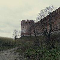 Крепостная стена, Смоленск :: Woodoo mooroo
