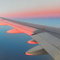 Вид на крыло самолета :: Лев