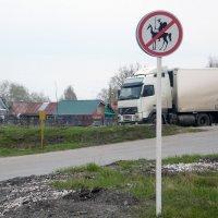 Дорожный знак. :: Ольга Зубова