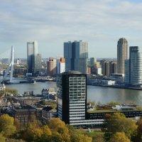 Роттердам :: IURII