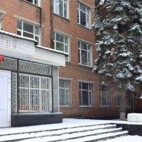Морозы суровые в этом году :: Владимир Болдырев