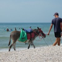 The Box - пляж эмоций. Бывают в жизни дни, когда заняты  две руки... :: Александр Резуненко