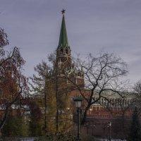 Красный ноябрьский Кремль :: Александра