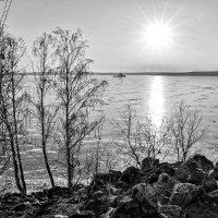 Ледяное солнце ноября :: Марина Шанаурова (Дедова)