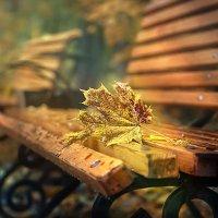 Осеннее настроение... :: GaL-Lina .