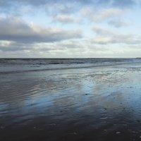 Белое море. Начало замерзания (1) :: Владимир Шибинский