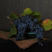 О винограде :: Наталья (D.Nat@lia) Джикидзе (Берёзина)