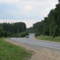 Дороги, дороги... :: Вера Щукина