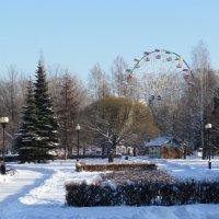 Зима в городском парке :: Galaelina ***