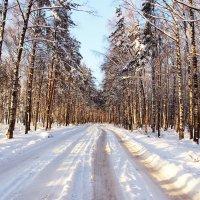Скоро новый год :: Краснов  Ю Ф