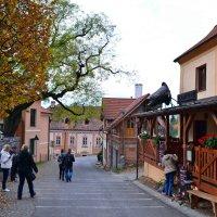 В чешских городках :: Ольга