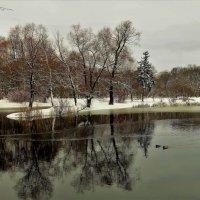 Осенний день,в зимнем очаровании... :: Sergey Gordoff