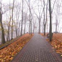 осень в парке :: Владимир Зырянов