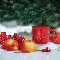 Яблоки на снегу :: Оксана Анисимова