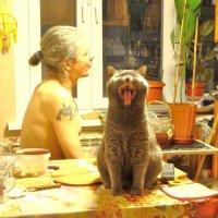 Дело было вечером, делать было нечего. Котик пел, а сын молчал... :: Galina194701