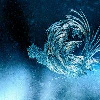 Зимние узоры на стекле :: Виктор