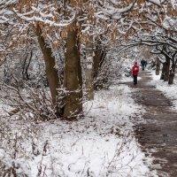 первый снег :: sergio tachini