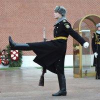 Смена караула.в Александровсом саду Кремля. :: Татьяна Помогалова