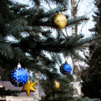 Новогодушка.. :: Анна Окунева